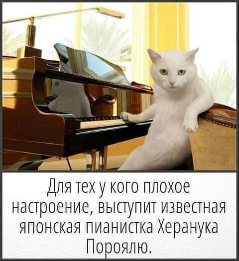 http://forumimage.ru/uploads/20210911/163138822099407599.jpg