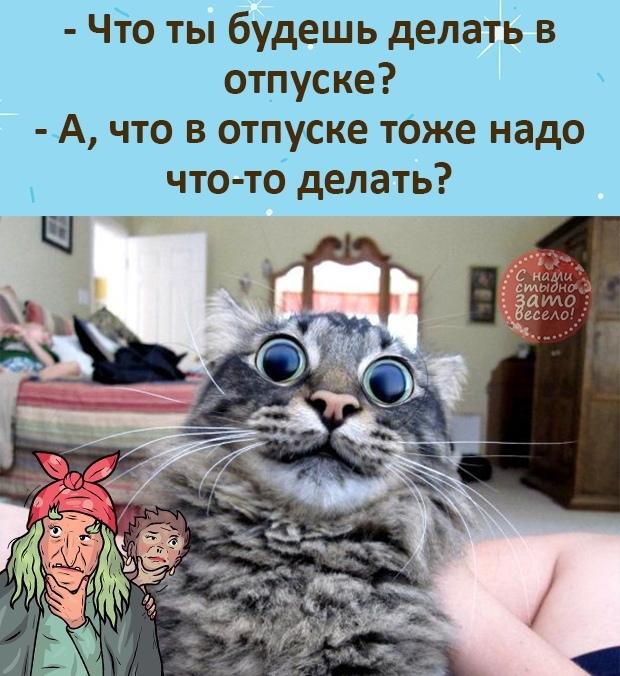 http://forumimage.ru/uploads/20210911/163138822183784119.jpg