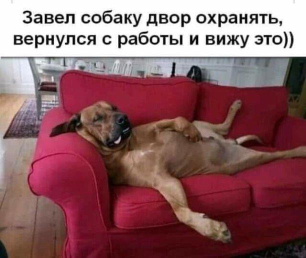 http://forumimage.ru/uploads/20210911/16313882221966140.jpg